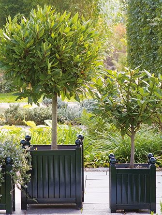 Versailles Planters Classic Garden Elements Uk