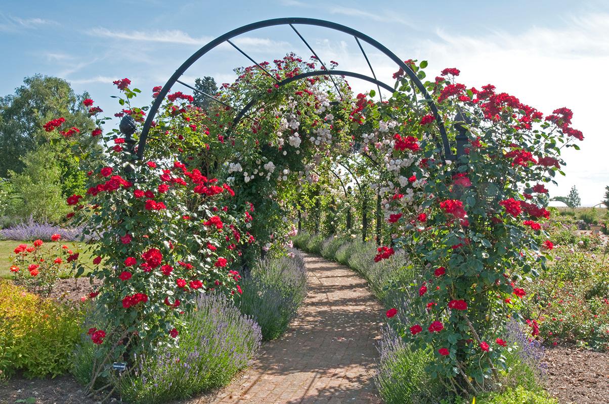 Garden Archway St. Albans