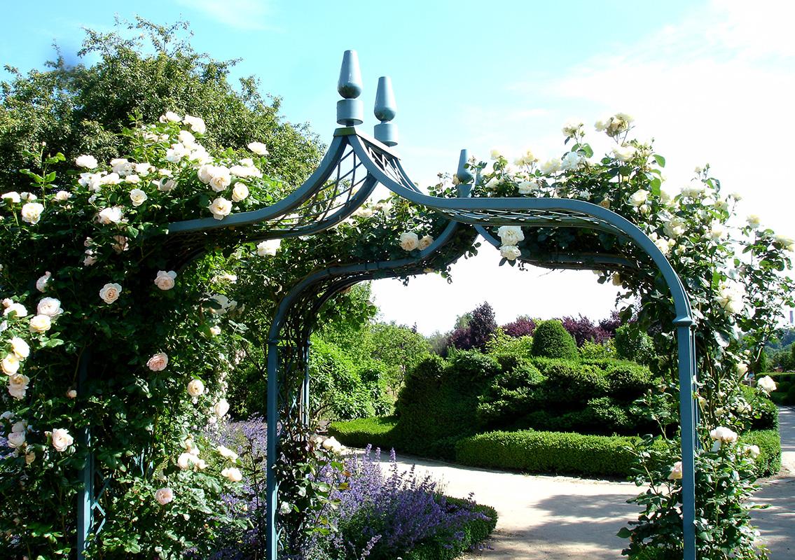 garden metal arch