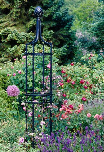 Metal Garden Obelisk in early summer border