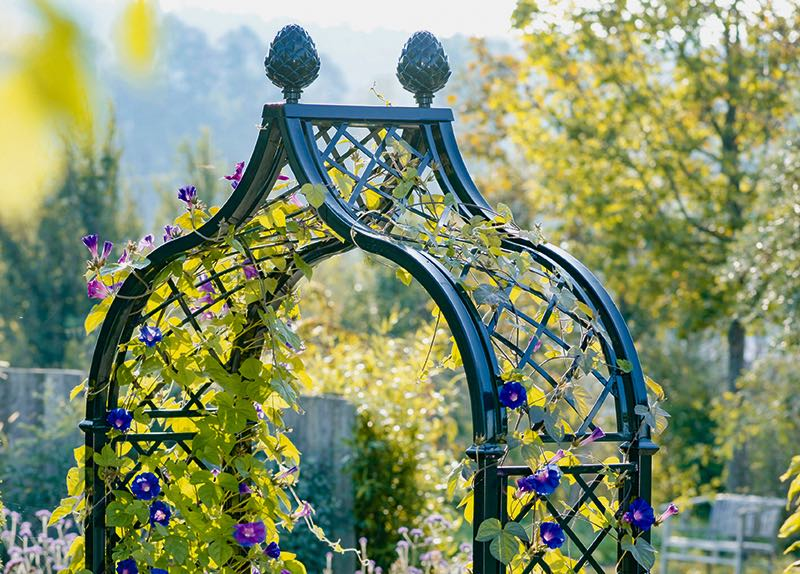 Metal Garden Arches - Garden Archways - Garden Arches with Gates