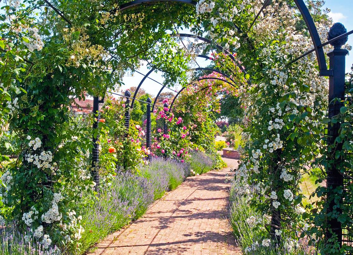 garden-archways-royal-rose-society-st-albans-classic-garden-elements