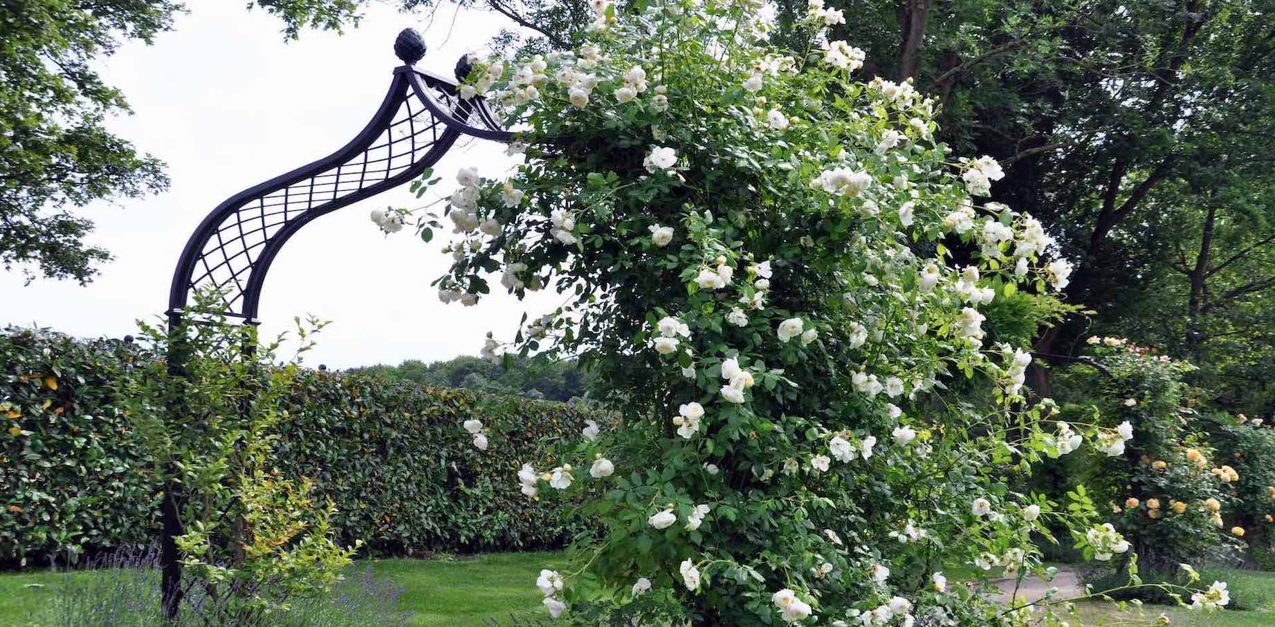 Metal-Rose-Arch-by Classic Garden Elements