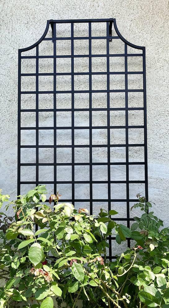 Wollaton Metal Wall Trellis